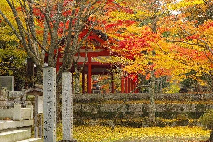 2018年10月30日 高野山紅葉ツーリング (15)