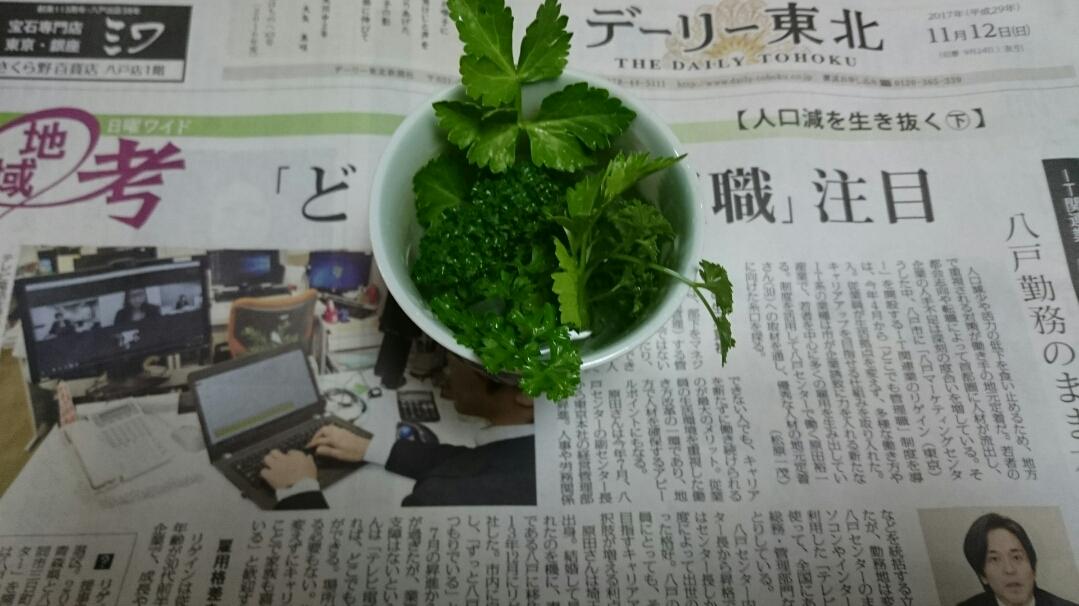 DSC_yoruasa4909.jpg