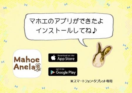 mahoe-apuri-001.jpg