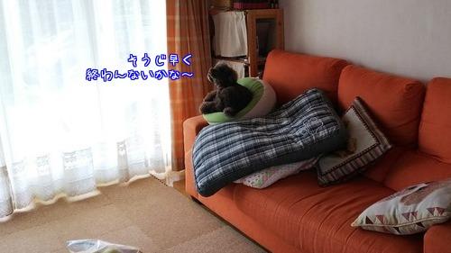 u62wVE_QKA8j8DN1506594281_1506594502.jpg