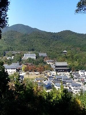 双ヶ岡より仁和寺を見る1711
