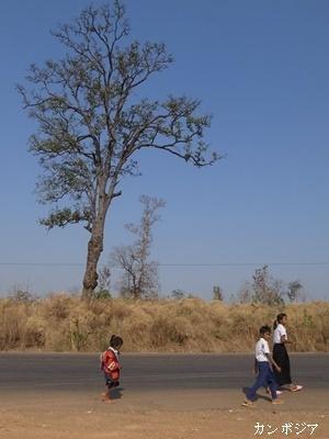 カンボジア子ども道を歩く1712