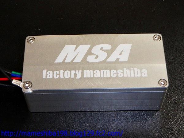 MSA.jpg