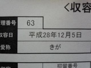 170830_191747_ed.jpg