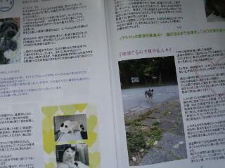 moblog_304a125b.jpg