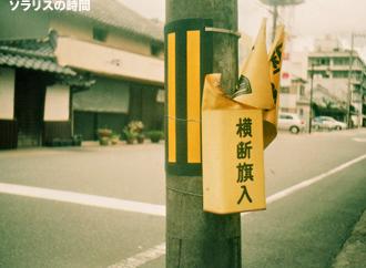 987-125-0uトイカメ篠山17