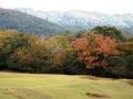 奈良公園まほろば