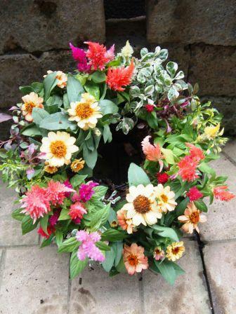 ハミングさんお花1