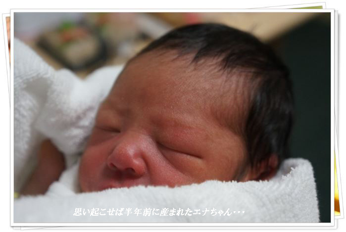 エナちゃんが産まれた