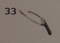 DSCN8729 のコピー 2
