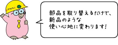 chapin4.jpg