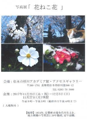 ハガキ_convert_20171103145237