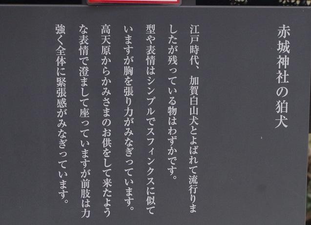 IMGP5513_0108i.jpg