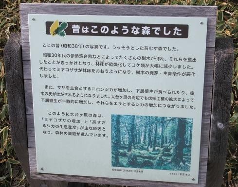 16 正木が原の説明看板