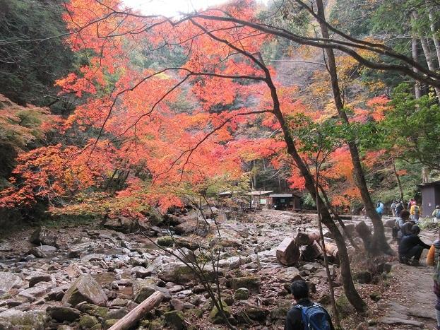 12 滝・中