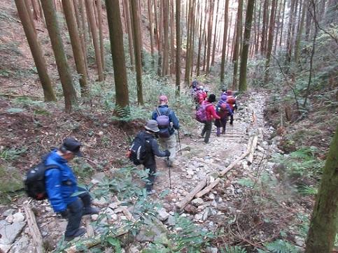 14 登山道を下る