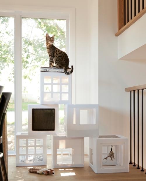 katt3キャットタワーハウス