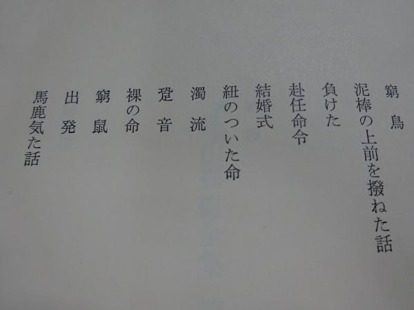 DSC09618.jpg