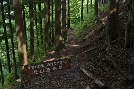 『14_201707160905登山道』