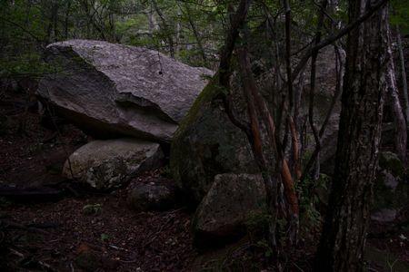 『05_201708121349登山道の巨岩』