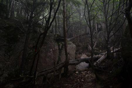 『33_201708130728登山道』
