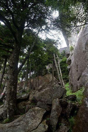『46_201708130815登山道』