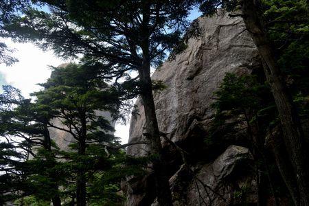 『60_201708130900大ヤスリ岩と瑞牆山』