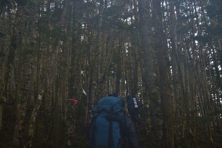 『16_10080620登山道』