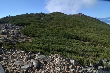 『35_10080832金峰山を見上げる』