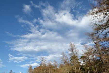『031527_239雲』