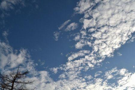 『031532_242雲』