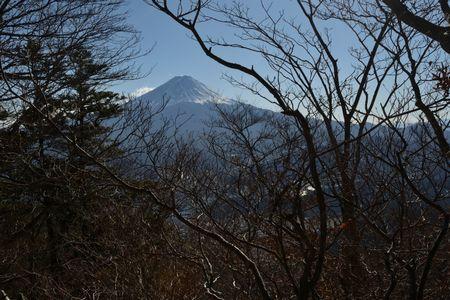 201801021316_197藪から富士
