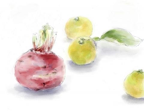 赤カブと柚子_bak
