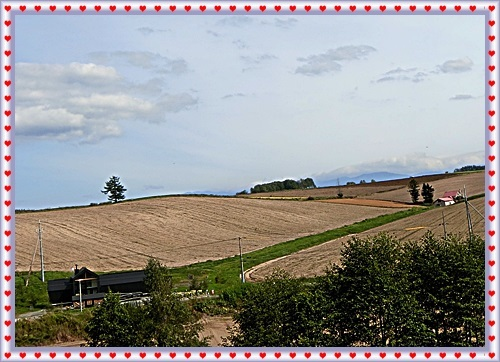 CIMG1298メルヘンの丘