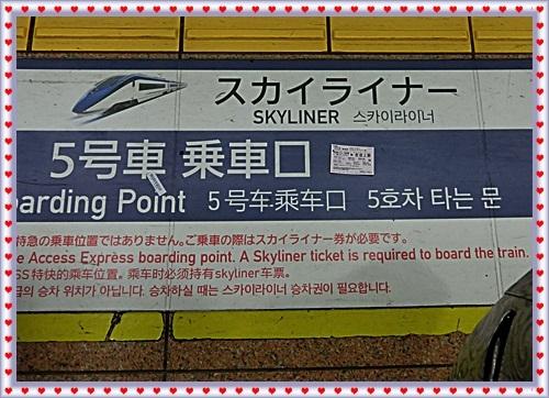 CIMG0115_2017111115510990e.jpg