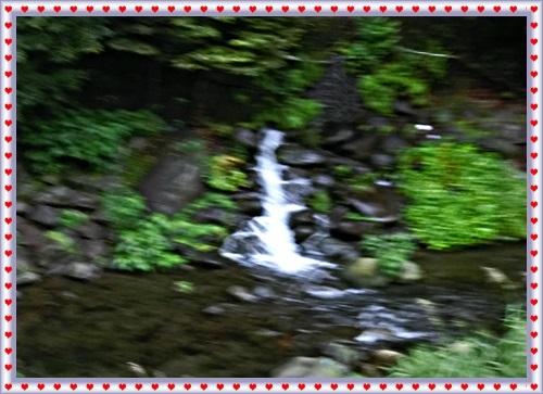 CIMG0313_20171113200020089.jpg