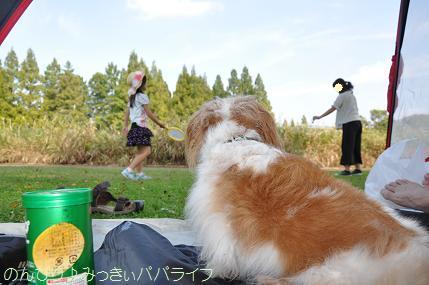 hanyusuigo201709.jpg