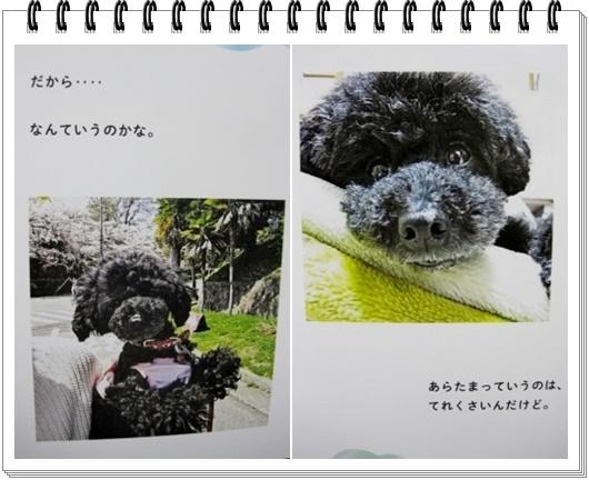 page2_20171018213126400.jpg