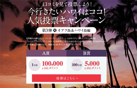 JALは、今行きたいハワイの人気投票で、100,000e JALポイントがプレゼントされるキャンペーンを開催!