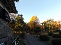 20181027松本城05