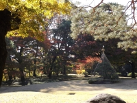 20181125殿ヶ谷戸庭園17