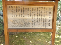 20181125殿ヶ谷戸庭園19