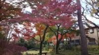 20181204山本有三記念館14