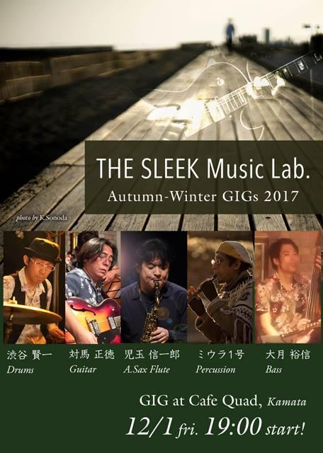 sleek_ML171201.jpg