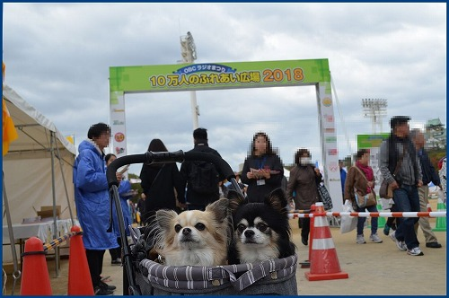 20181123OBC (1)