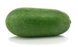 melon-d-hiver-37488618.jpg
