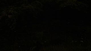 20170527沢地水神さん022J