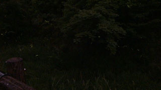 20170527沢地水神さん021J