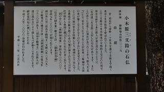 20161120御胎内清宏園236