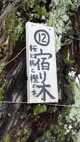 20161126江川邸245